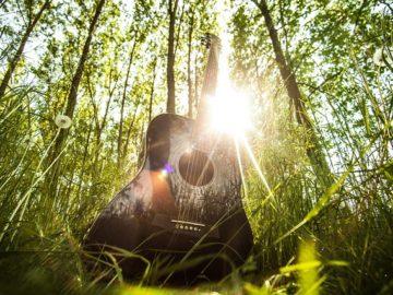 chitarra in mezzo al bosco